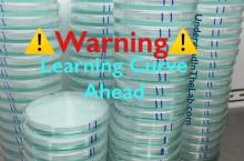 The words Warning Learning Curve Ahead in the front. Several stacks of petri dishes with blue liquid in them in the background.